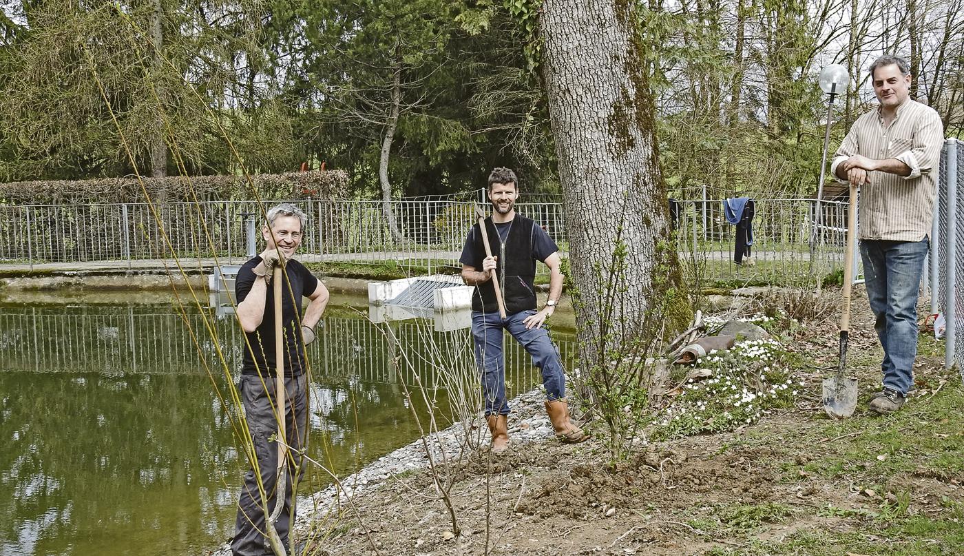 Sagiweiher Erstbepflanzung
